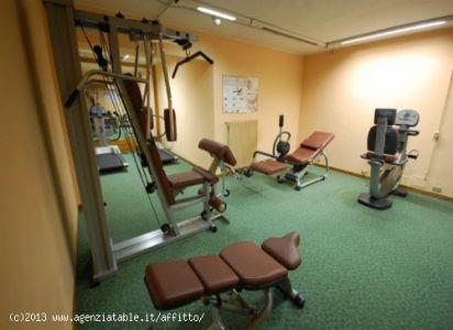 zona fittness